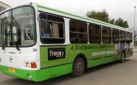 froggi-1